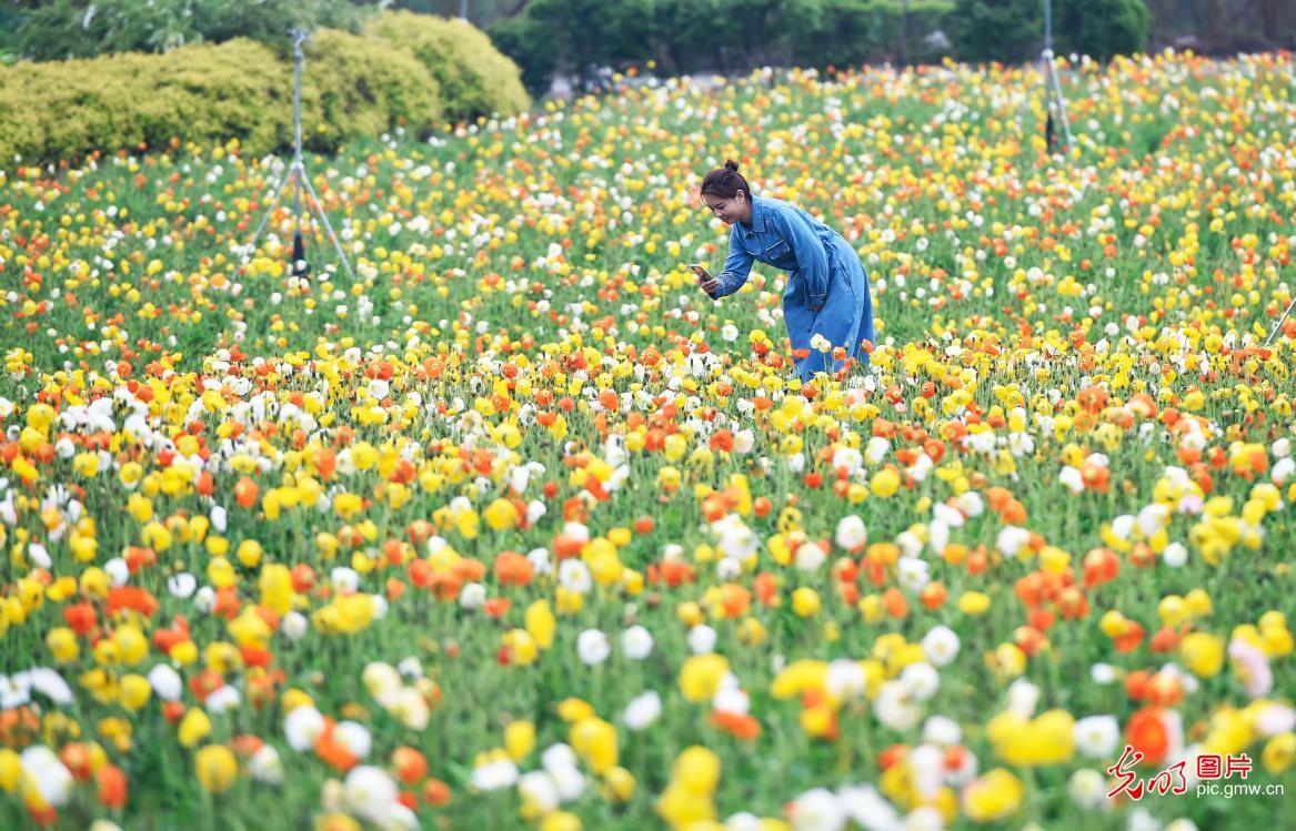 特色资源发展农业综合体助增收
